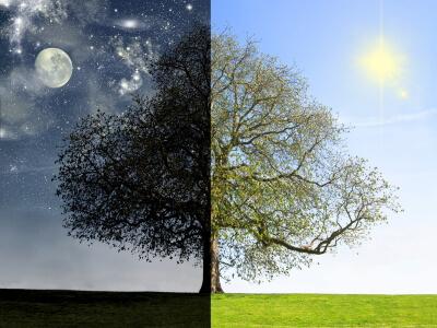 Fases del sueño_dia y noche